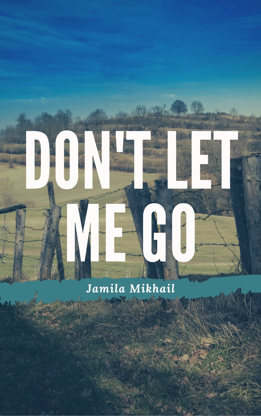 Don't Let Me Go(4)